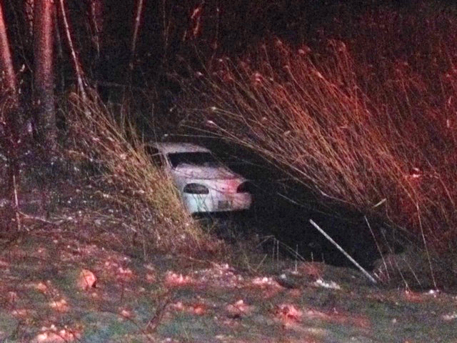 Dwayne Smith of Fenton said he was driving along I-96 when he felt his car start to fishtail and went down the embankment. Fortunately, he landed in the cattails and muck instead of the nearby tall trees. (Credit: Mike Campbell/WWJ Newsradio 950)