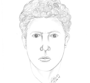 Police are asking for help locating the man in this composite sketch. (Armada Police)
