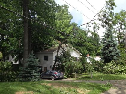 Trees down in Waterford. (credit: Sandra McNeil/WWJ)