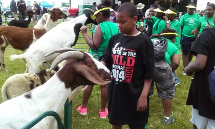 32nd annual Metro Detroit Youth Day on Belle Isle (credit: Ron Dewey/WWJ)
