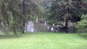 Backyard flooding (WWJ)