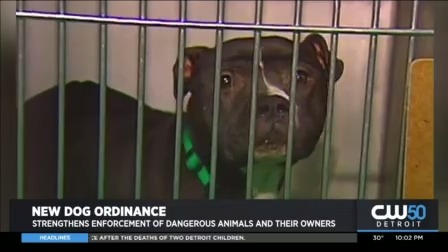 City Council Passes New Stricter Dog Ordinance