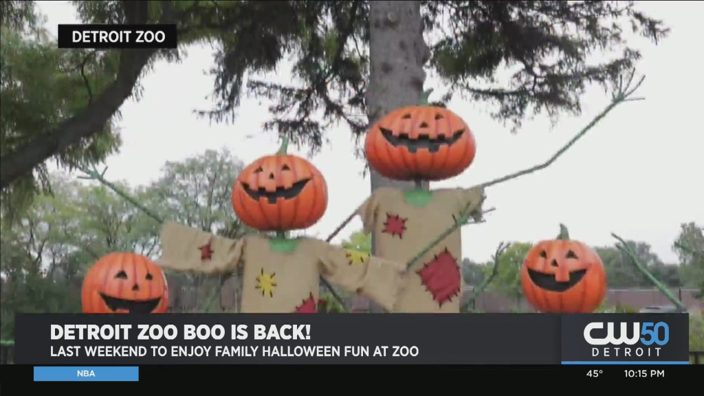 The Detroit Zoo To Host Its Final Weekend Of Family-Friendly Halloween Event 'Zoo Boo' Oct. 22-24